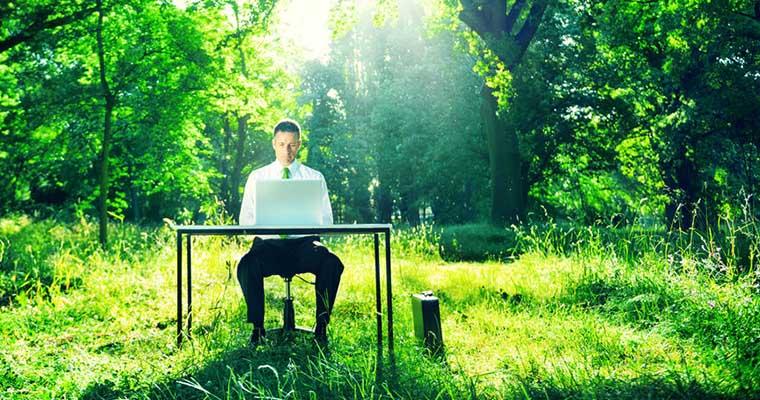 La nouvelle tendance des «green jobs»